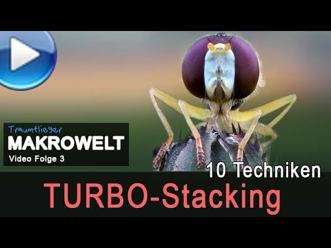 so funktioniert Turbo-Stacking (10 Methoden, Traumflieger Makrowelt Nr. 3)