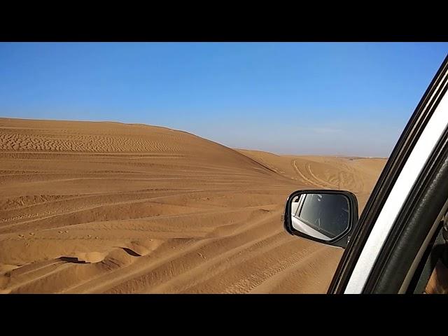 Morocco Sahara Desert LOVE