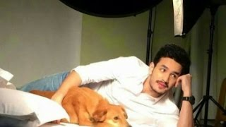 akkineni akhil debut movie launch