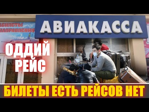 Регулярные рейсы в Ташкент  Билеты есть, а самолетов нет  Что делать дальше 06.08.2020