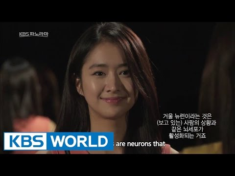 KBS Panorama : Believing Brain (Pascal's Wager) | KBS 파노라마 : 신의 뇌 (파스칼의 내기) - Part 2 (2014.12.26)