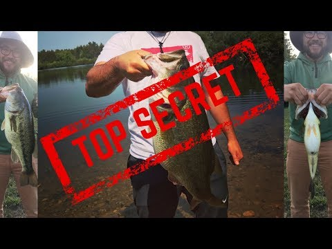 Fishing For GIANT BASS In SECRET GUELPH POND