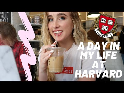 A Day in the Life of a Harvard Student