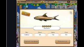 Гайд по игре Let's Fish - Как поймать легендарную рыбу Вали