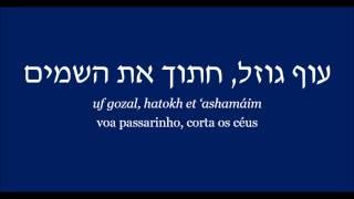 UF GOZAL   Gidi Gov e Shlomo Artzi