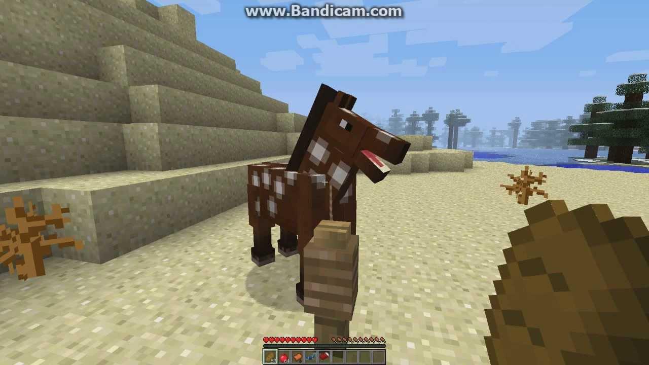 Чем приручить лошадь в майнкрафте 1.8.9