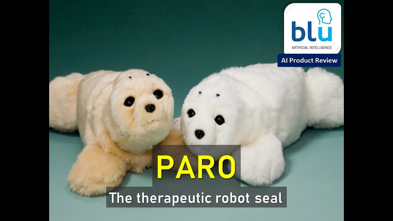Review: Paro the Theraputic Robot Seal | Rating: 8.25/10