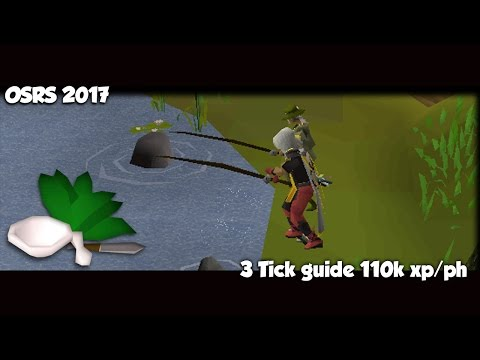 2017: 3 Tick Barbarian Fishing Guide [OldSchool Runescape] In-Depth Basic + Advanced Knife Method!