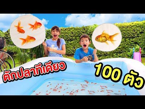 บรีแอนน่า   ตักปลาทีเดียว 100 ตัว 🐠🔎 ด้วยที่ตักปลากระดาษยักษ์ ทำเองจากแด๊ดดี้