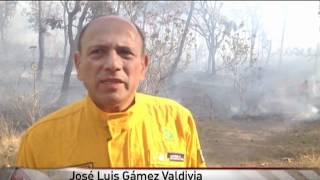Controlan incendio en bosque La Primavera