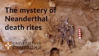The mystery of Neanderthal death rites