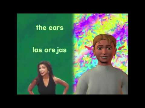 Parts Of The Body Song With Sentence Practice   English To Spanish