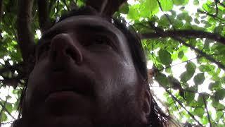 OEUF de CHEVAL Colombien (vraie histoire) (SCIENCE)