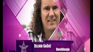 Zeljko Sasic - Dovidjenja // PINK MUSIC FESTIVAL 2014