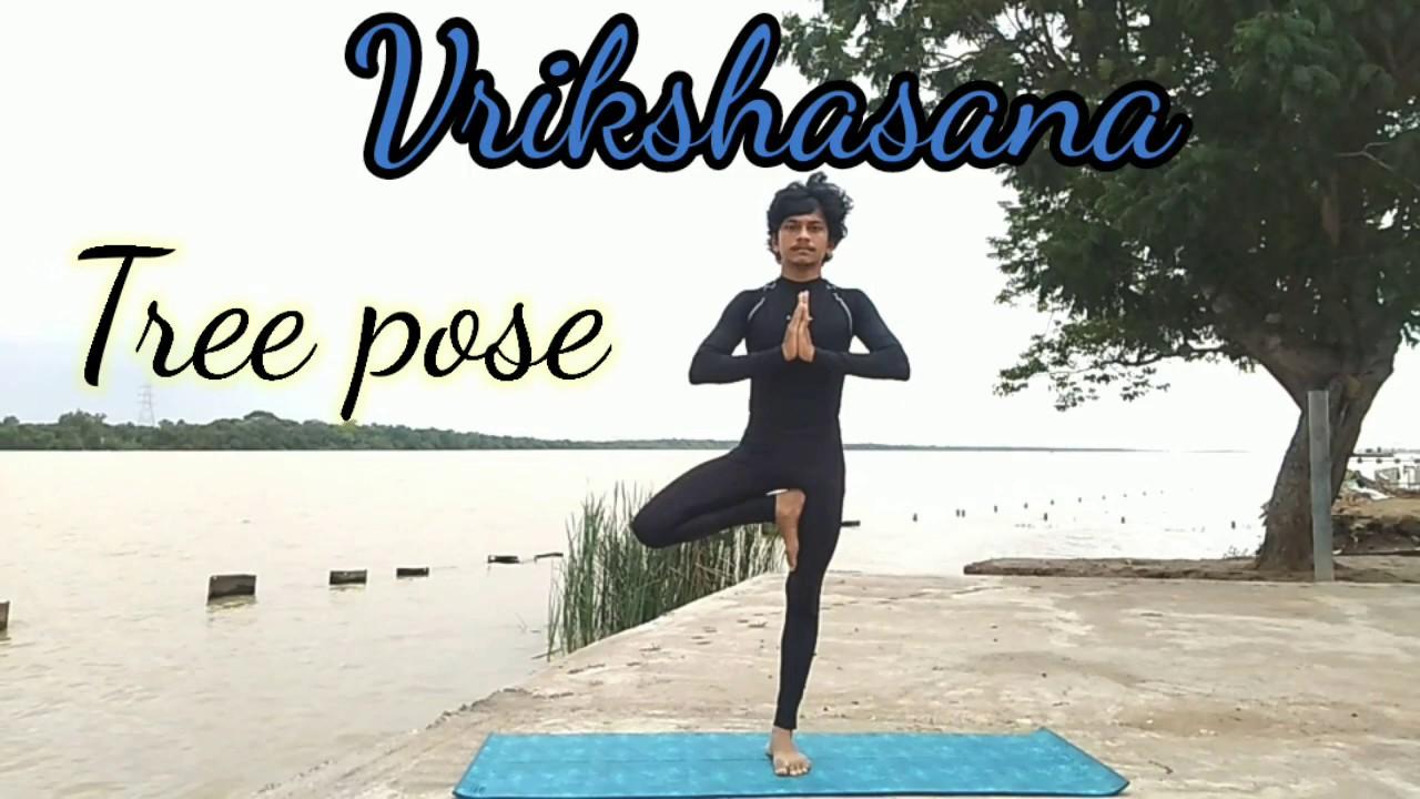 Vrikshasana In Telugu // Tree Pose & Benefits // Yoga for ...