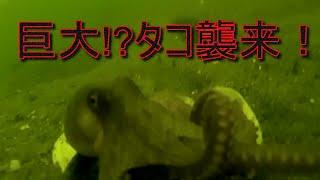 チャンネル登録お願いします→http://www.youtube.com/channel/UCwJ0csCs...