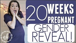 Video 20 WEEKS PREGNANT   EMOTIONAL GENDER REVEAL!!! download MP3, 3GP, MP4, WEBM, AVI, FLV November 2017