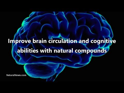 Improve brain circulation and cognitive abilities with natural compounds