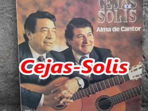 Cejas Solis Coleccion