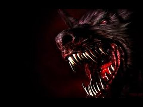 Werewolves Of London Warren Zevon Lyrics