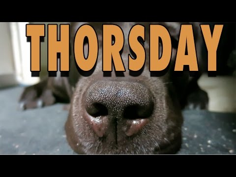Thorsday - Ep. 10