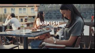 Turkish Meows!