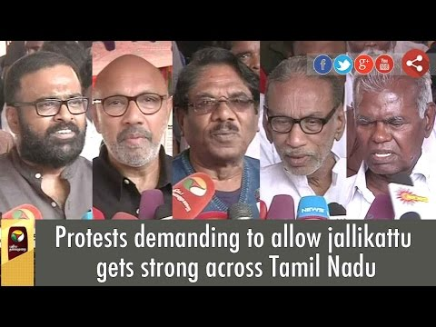 Protests demanding to allow jallikattu gets strong across Tamil Nadu