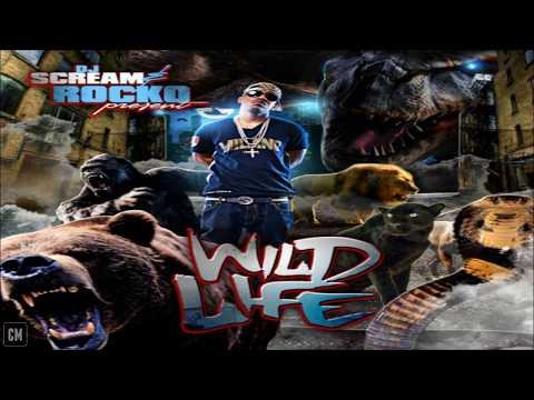 Rocko - Wild Life [FULL MIXTAPE + DOWNLOAD LINK] [2010]