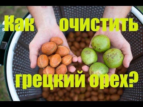 Купить продукцию нсп 495-748-82-08 в интернет-магазине. Состав грецкий черный орех black walnut (блэк волнат): 1 капсула содержит: кожура.