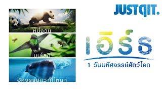 รู้ไว้ก่อนดู EARTH: One Amazing Day 1 วันมหัศจรรย์สัตว์โลก #JUSTดูIT