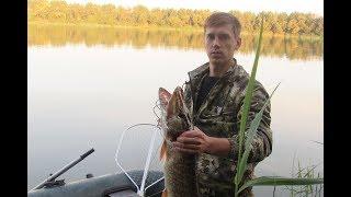 Рибалка велика риба , рибалка на щуку в Україні