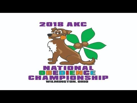 Ring 4 - 2018 AKC National Obedience Championship Top 20