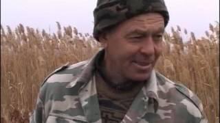 Охота на фазана в Астрахани видео