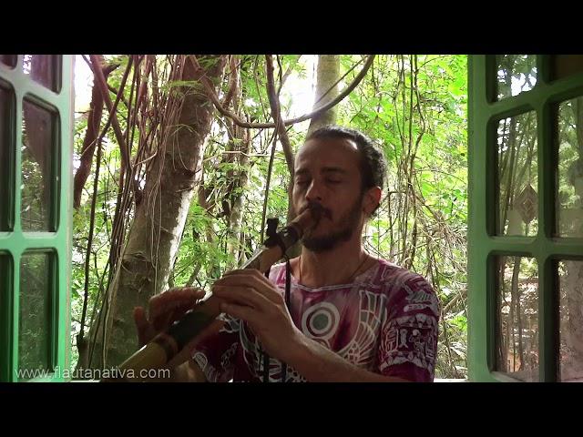 Native Flute Boa Totem F#- Flauta estilo nativo americano