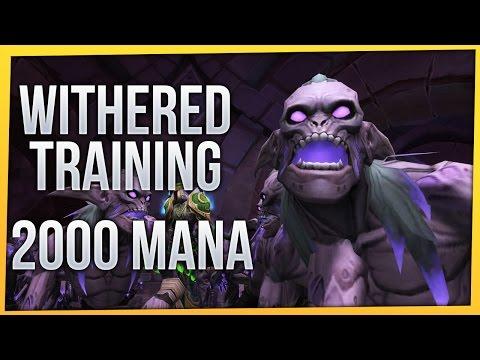 Withered Training: 2000 Mana | Havoc Demon Hunter [Twitch VoD]