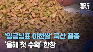 '임금님표 이천쌀' 국산 품종 '…