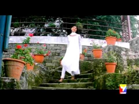 BEST HIND SONG