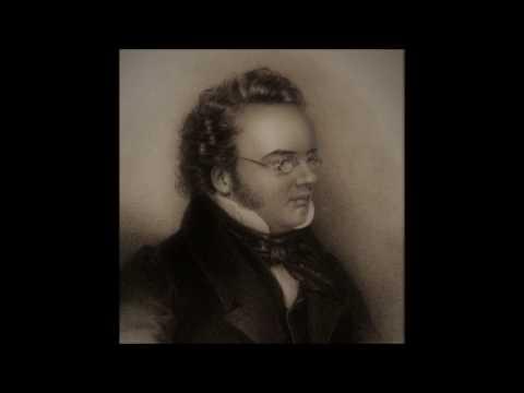 Franz Schubert piano sonata n 13 op 120 D 664