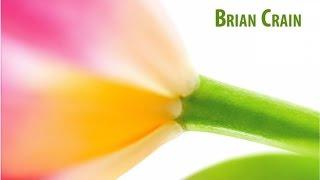 Brian Crain Spring Symphonies Full Album