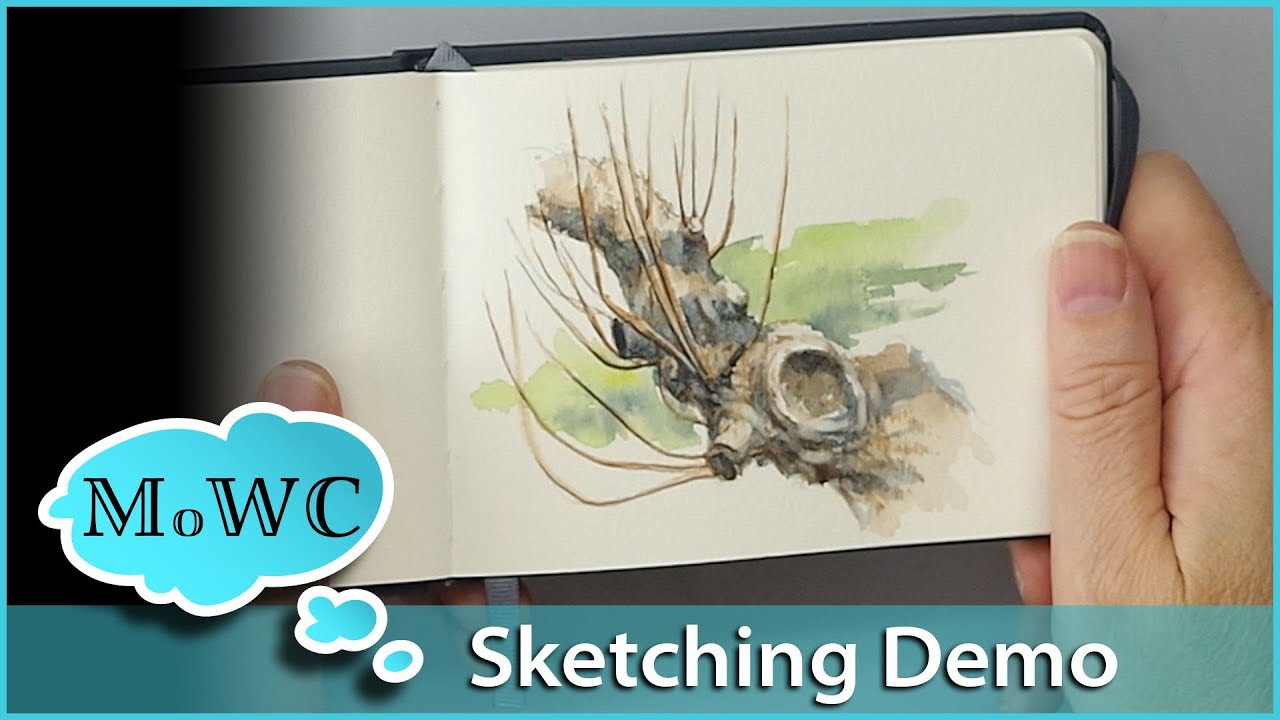 Watercolor Sketching In The Perfect Sketchbook Demo