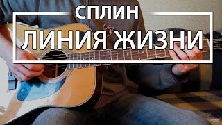 Как играть Сплин Линия Жизни (Гни Свою Линию). Урок и аккорды на гитаре для начинающих
