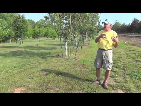 Vegetable Gardening with Jim Kohler