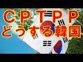 【韓国経済】TPPに加盟したら日本企業が韓国を乗っ取る、と専門家が懸念を表明 少しでも有利な時期に加盟すべきだ