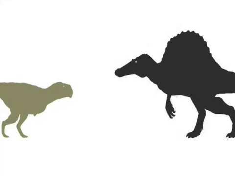 ASDC - Spinosaurus vs Ekrixinatosaurus
