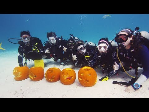 Lisa Foxx - Scuba Divers Compete In Pumpkin Carving Contest Underwater!