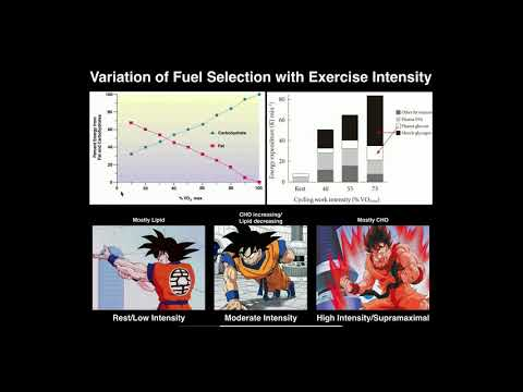 Exercise Physiology | Variation of Fuel Source with Exercise Intensity