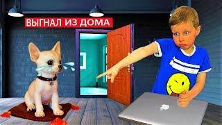 Богдан НАКАЗАЛ ЩЕНКА и выгнал его за дверь! Потеряли собаку! Видео для детей.