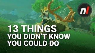 13 Things You Didn't Know You Could Do in The Legend of Zelda: Breath of the Wild