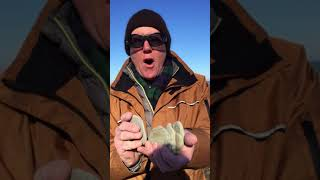 The Rex Reports - Lake Erie Stone Skipping