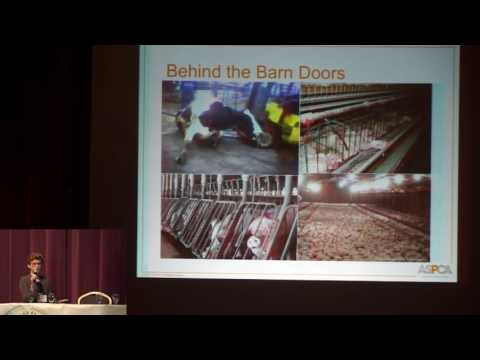 Trends in the Animal Agriculture Industry
